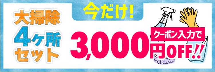 8/31まで 大掃除4ヶ所セット3,000円OFF