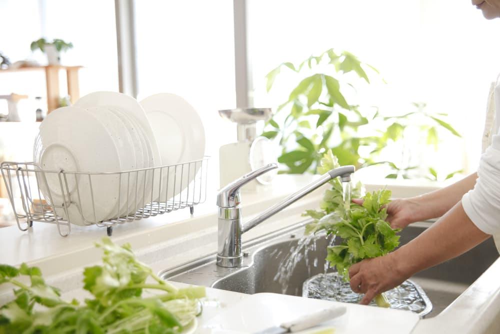 キッチンのシンクで野菜を洗っている