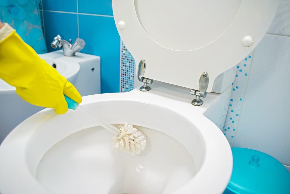便器をブラシでこすり洗いしている