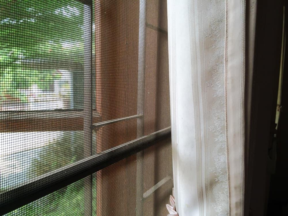 窓に網戸がついている