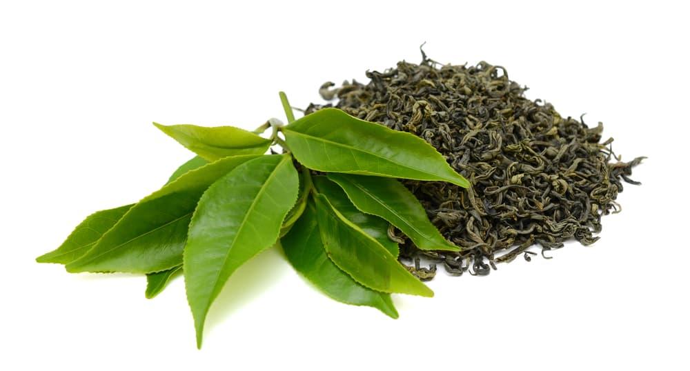 お茶の葉っぱと茶葉と乾燥させたもの
