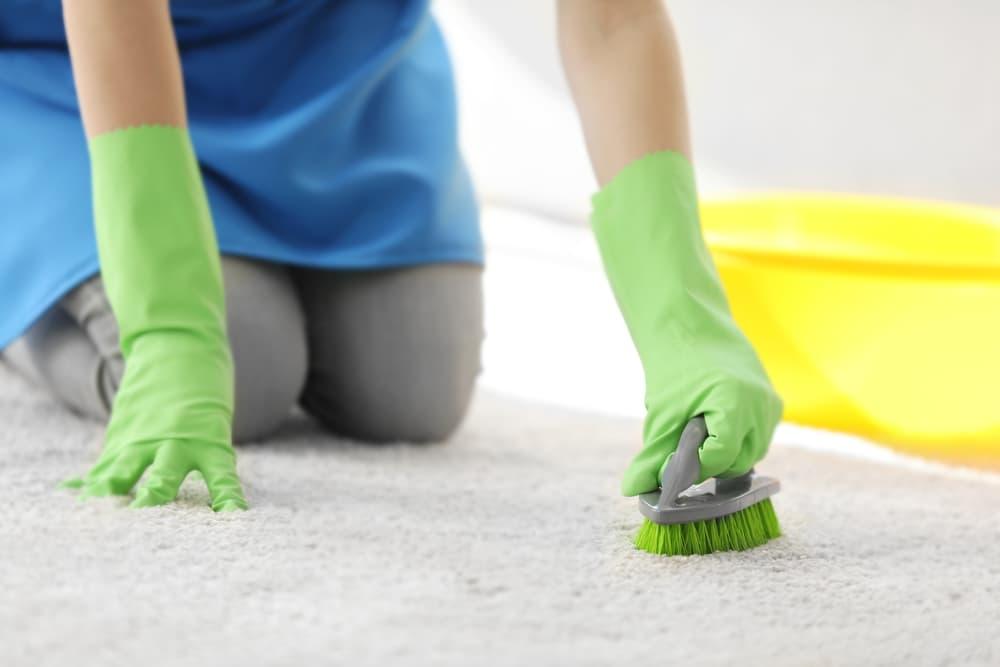 ゴム手袋をしてカーペットの掃除をしている手