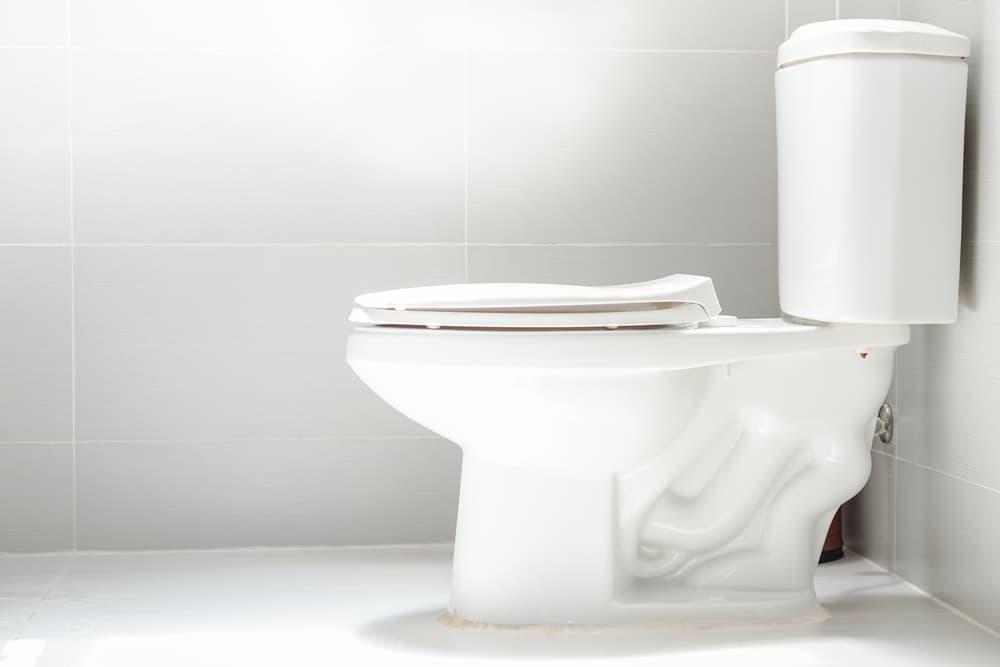 白を基調としたキレイなトイレ
