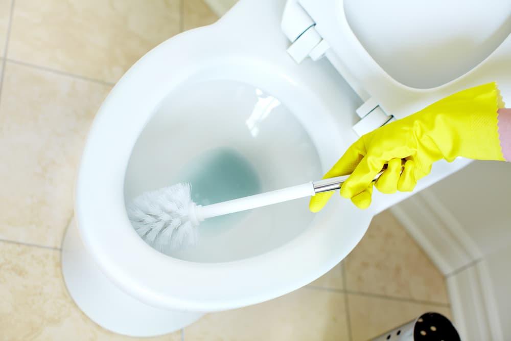 トイレの便器をブラシで擦っている