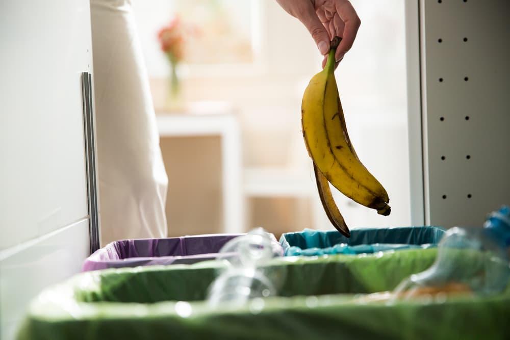 バナナの皮をゴミ箱に捨てようとしている