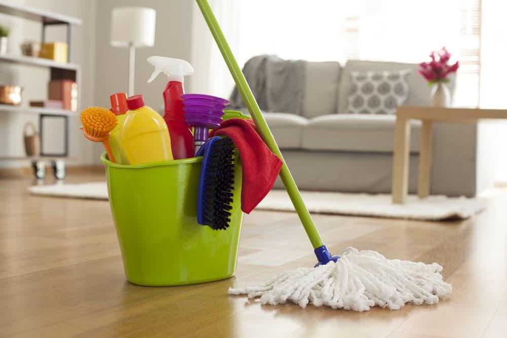 掃除に使う洗剤とモップ