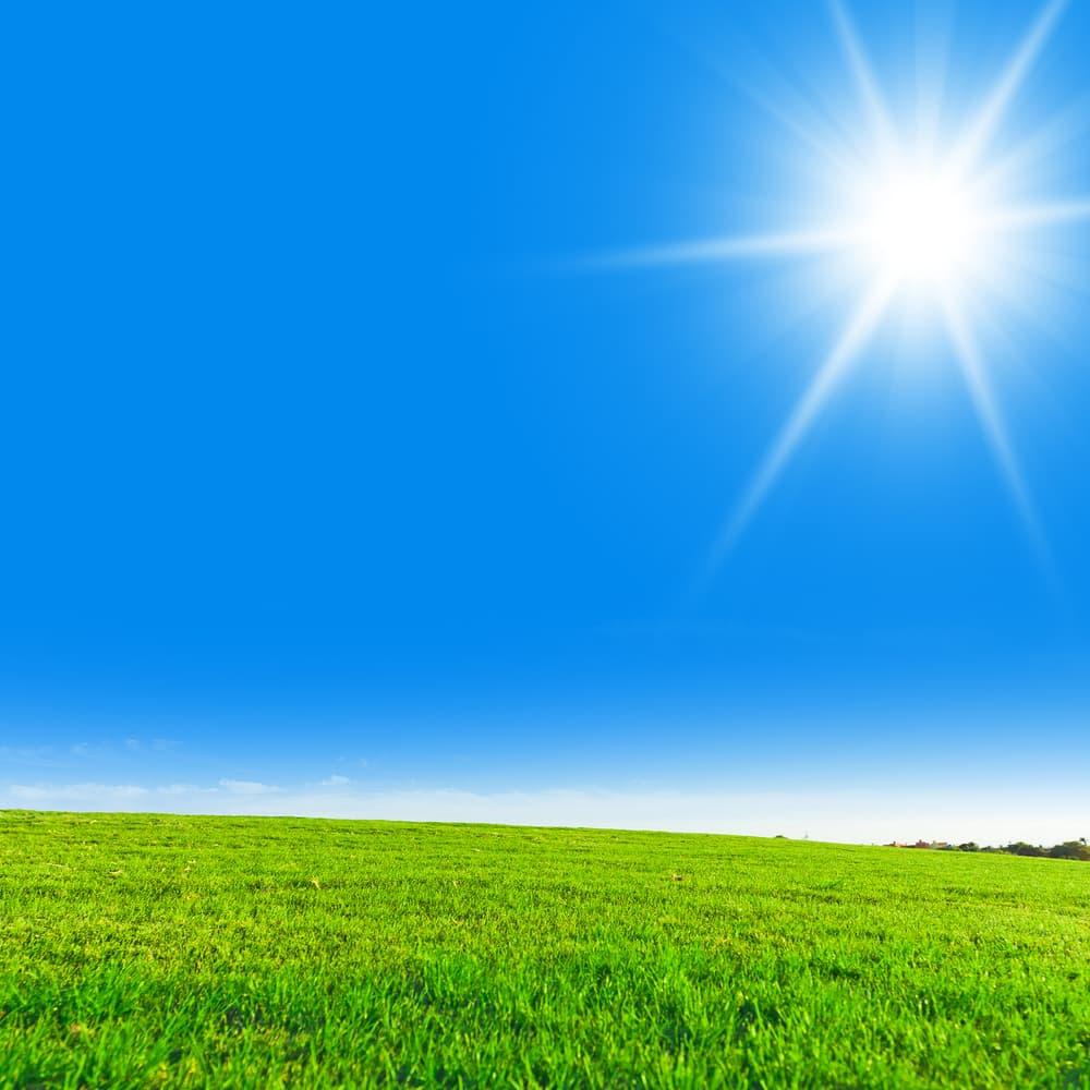 天日干しするのにぴったりな晴天の日